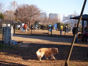 Monjirou201012_22