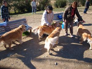 Monjirou2011__0013