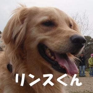 Kyoudai04