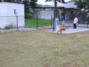 Kansai024