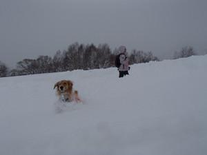 Snow0073