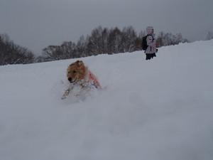 Snow0074