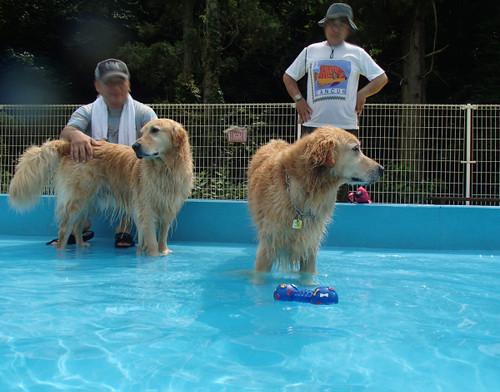 Pool102