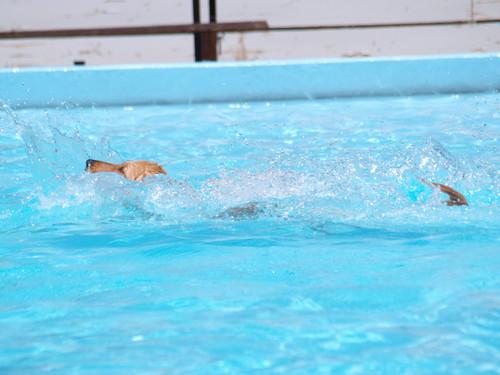 Pool07